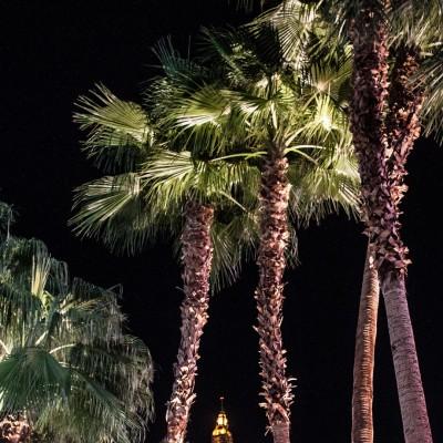 Der Eifelturm unter Palmen - da fühlt man sich doch gleich wie in Paris