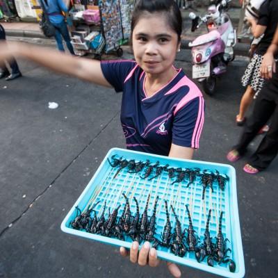 Skorpione für Touristen. Haben wir ausschließlich in der Khao San Road gesehen.